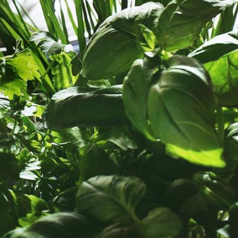 - Olivenöl aromatisiert